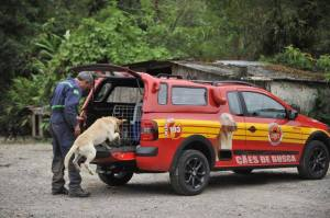 bombeiro_Busca por pessoa perdida na serra Dona Francisca SC.