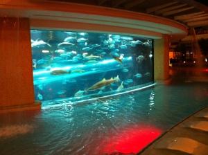 Cassino de Las Vegas com um aquário gigante e até com tubarões dentro.